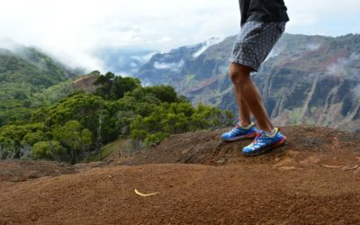 Hoka One One, Running. Review of the Hoka One One Speedgoat.