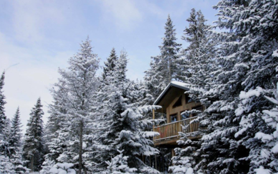. Find Peace & Tranquility: Treehouse Hotels.