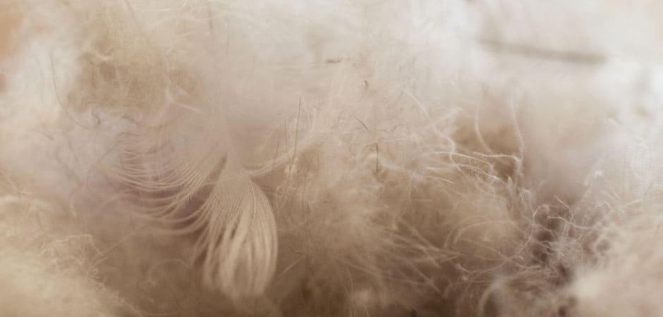 Manteau en duvet : quoi faire lorsque la fibre s'échappe de votre parka