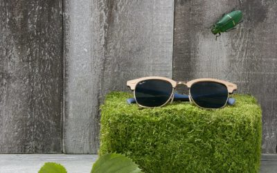 Ray-Ban. Ray-Ban : The Sunglasses Icon Since 1937.