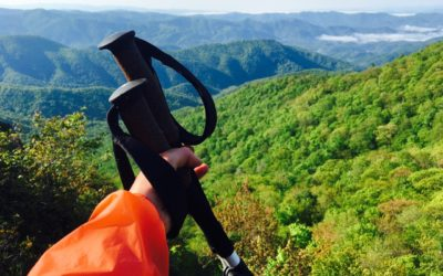 Black Diamond, Hiking & Trekking. Black Diamond Alpine FLZ Trekking Pole Review.