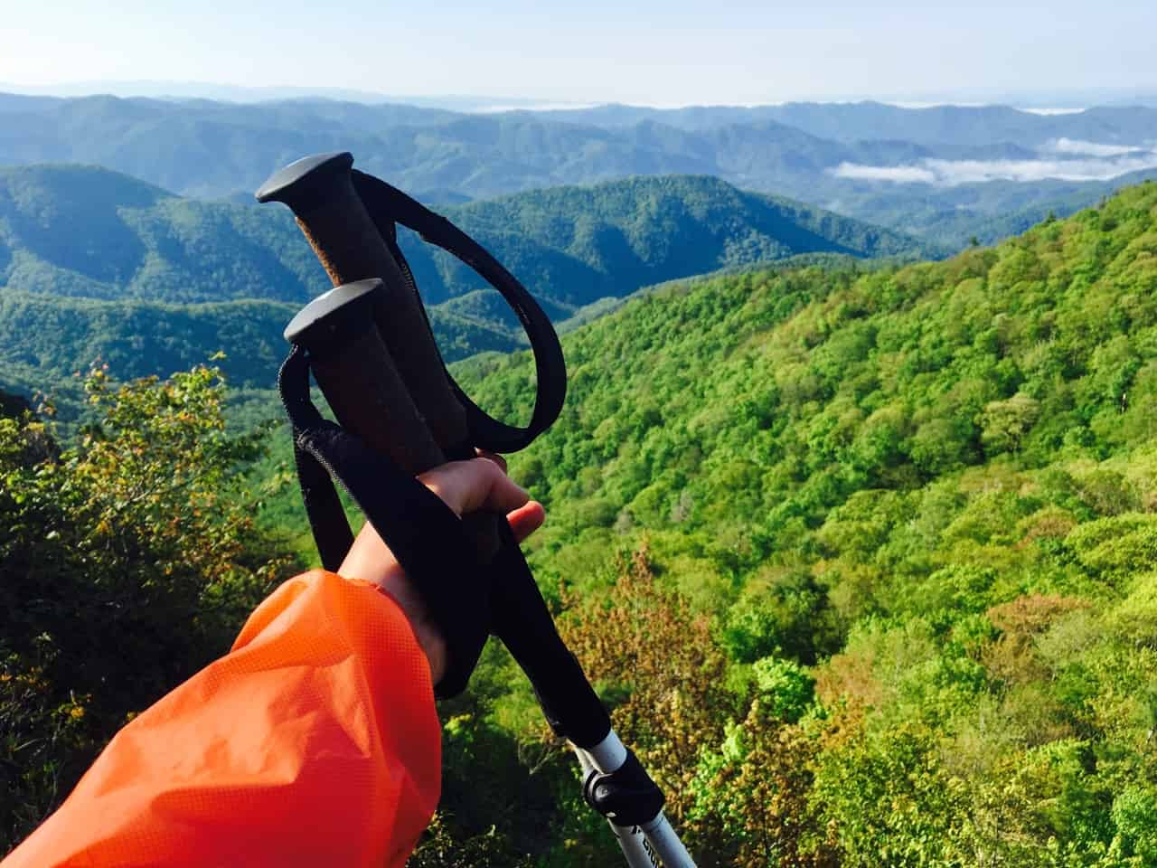 Black Diamond Hiking Trekking Alpine FLZ Pole Review