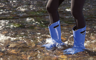 Bogs. Introducing the Women's Berkeley Rain Boot by Bogs.