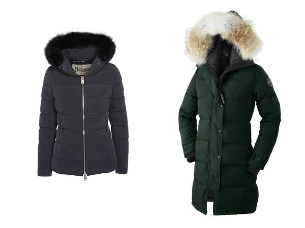 Differences Between a Parka and a Jacket - Altitude Blog