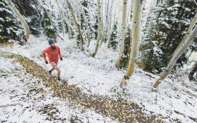 Salomon. Les meilleurs souliers pour courir l'hiver.