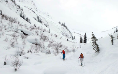 Arc'teryx, Black Diamond, Dynafit, Norrona, Patagonia, Pomoca, Ski & Snowboard. Backcountry Skiing Highlight Products.
