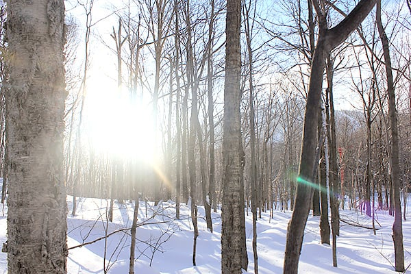 altitude-blog-ski-tour-picture-5