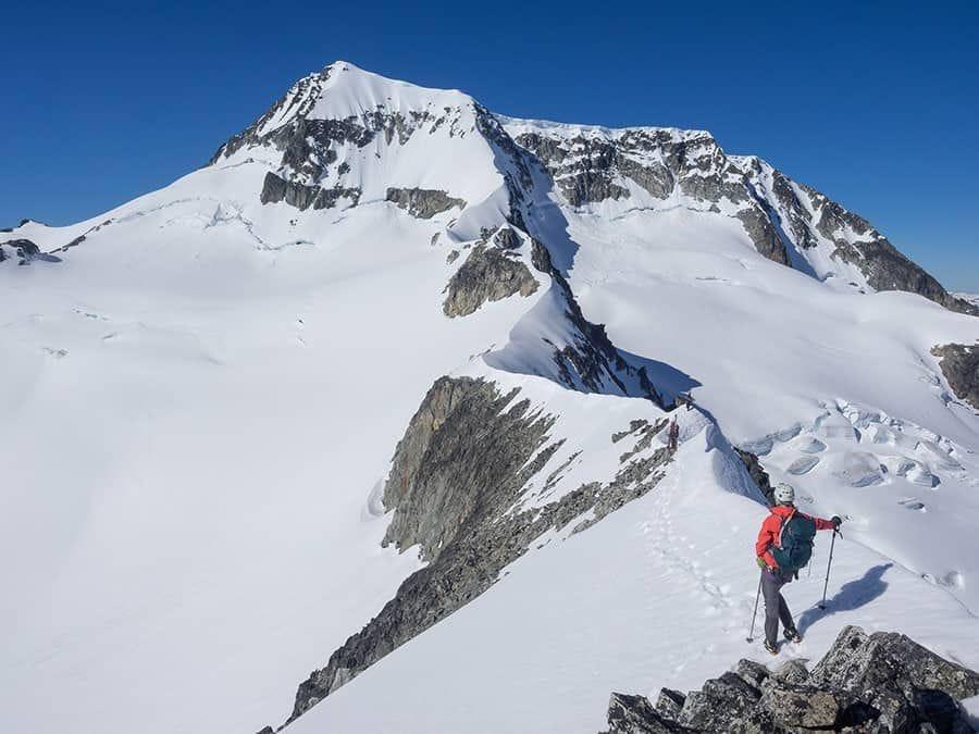 apex flex gtx jacket mountaineering