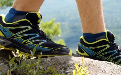 Running, Salomon. Salomon Wings Flyte 2 GTX Shoes Reviewed.