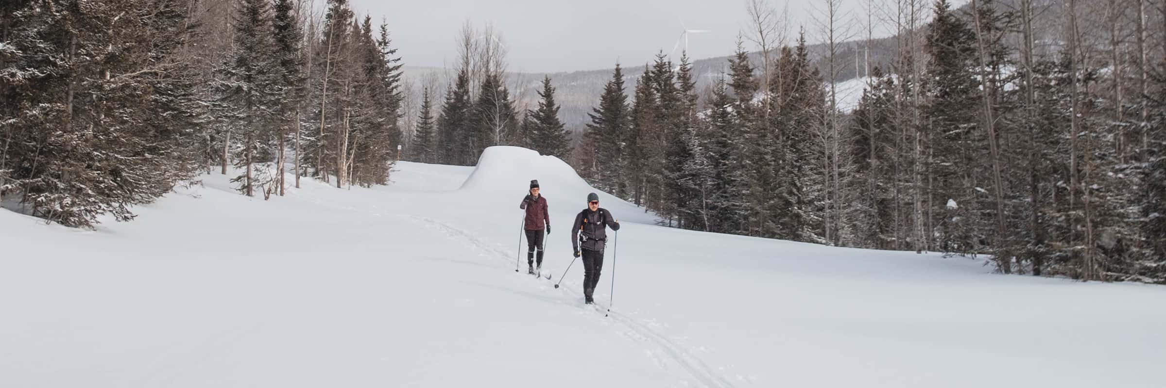 Best Spots to Cross Country Ski Near Montreal